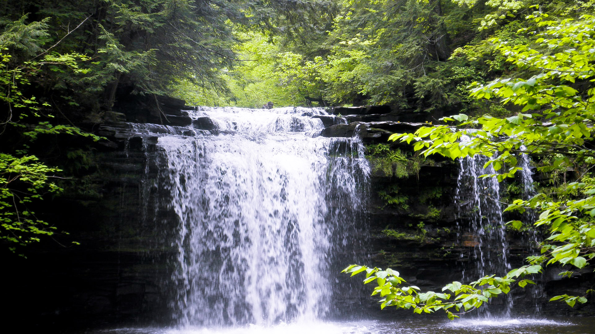 File:Christman Sanctuary, Main Waterfall 2.jpg - Wikipedia
