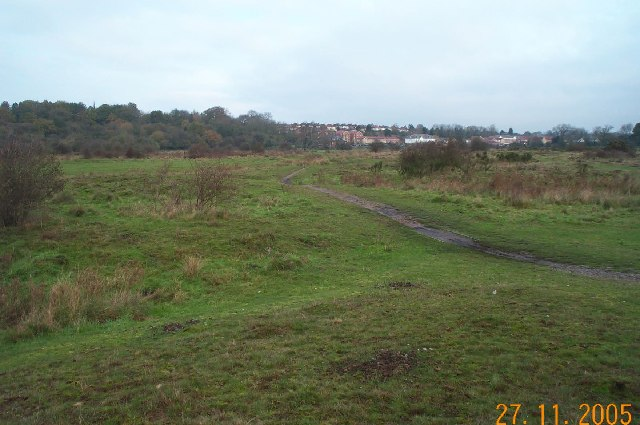 Croxley Common Moor - geograph.org.uk - 84439