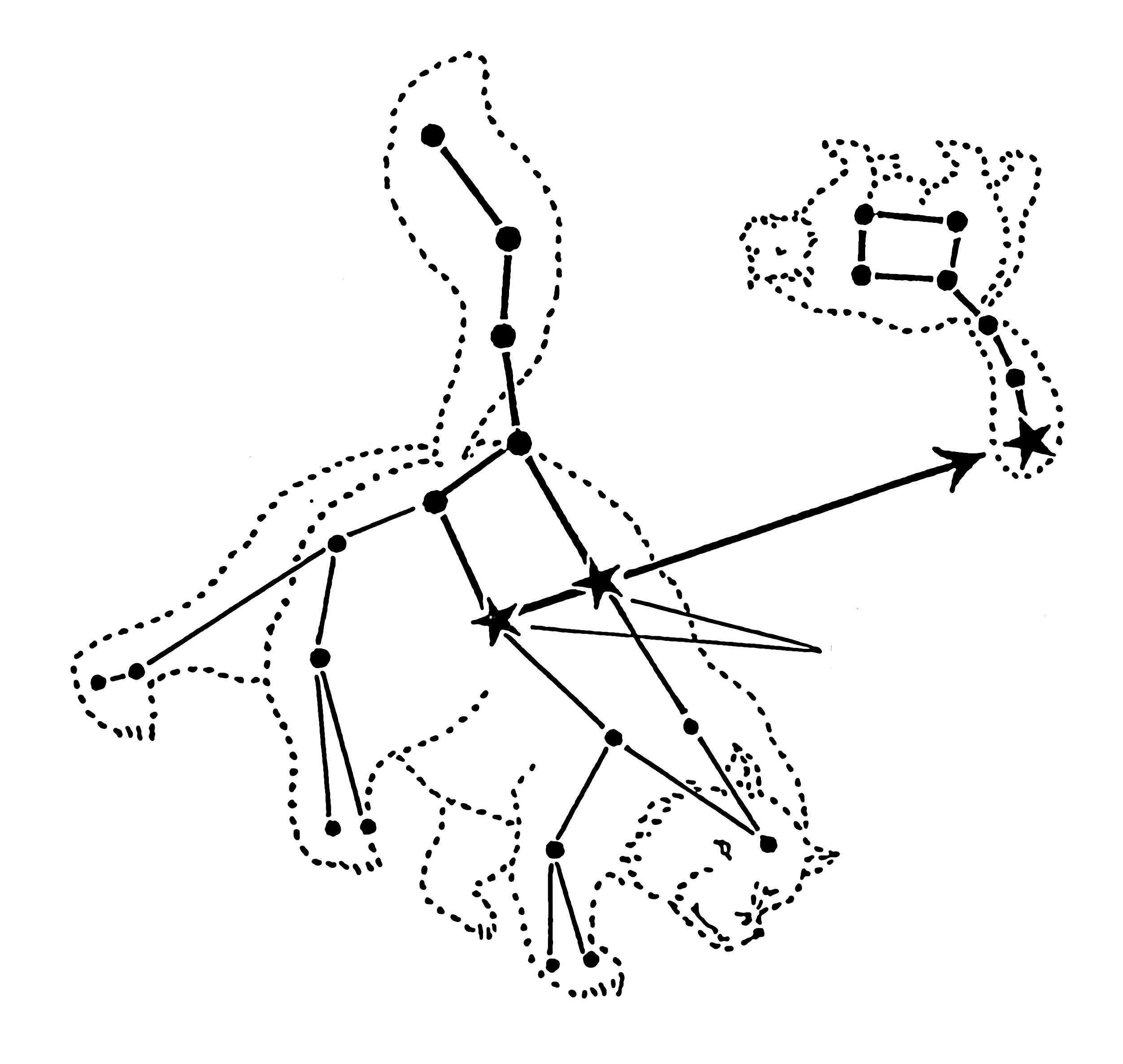 Constellations Ursa Major And Minor Ursa Major  from the Latin