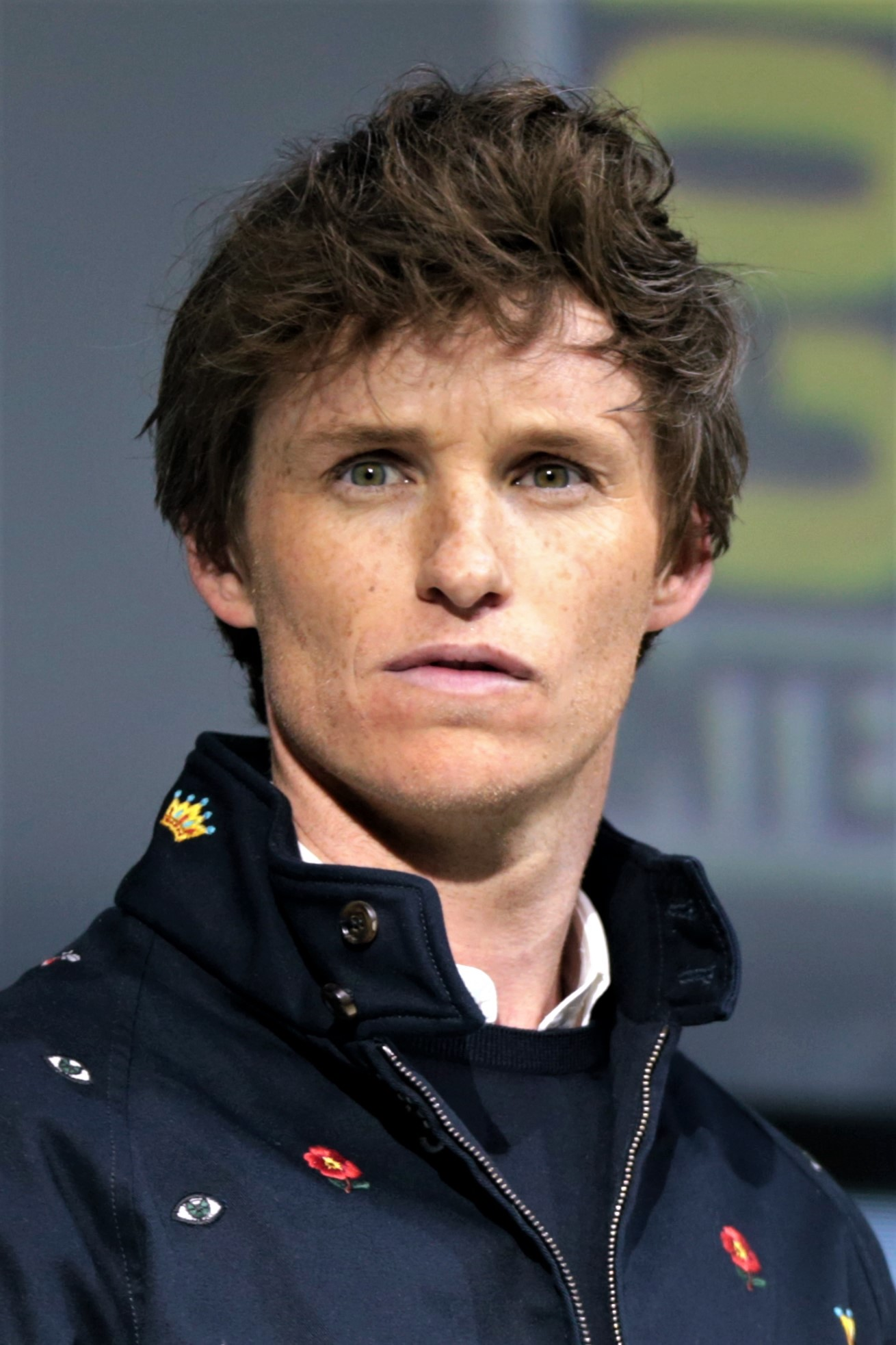 Redmayne at the 2018 [[San Diego Comic-Con]]