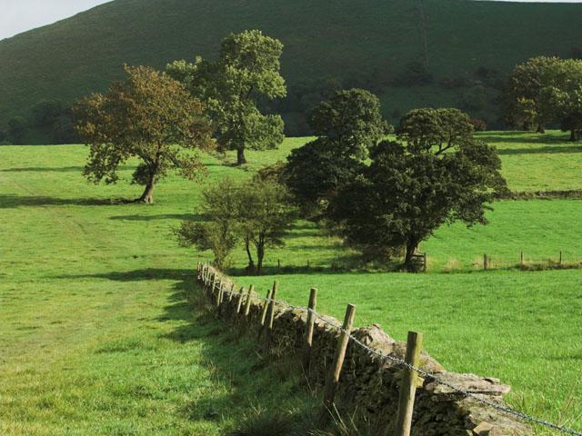 Farmland north of Longnor - geograph.org.uk - 375108