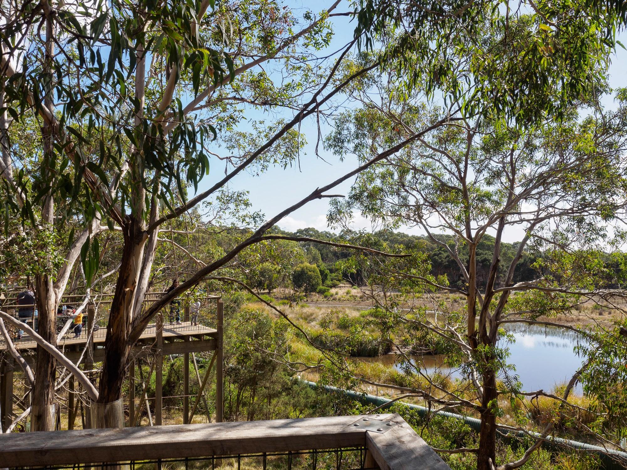 Phillip Island Nature Park Ceo