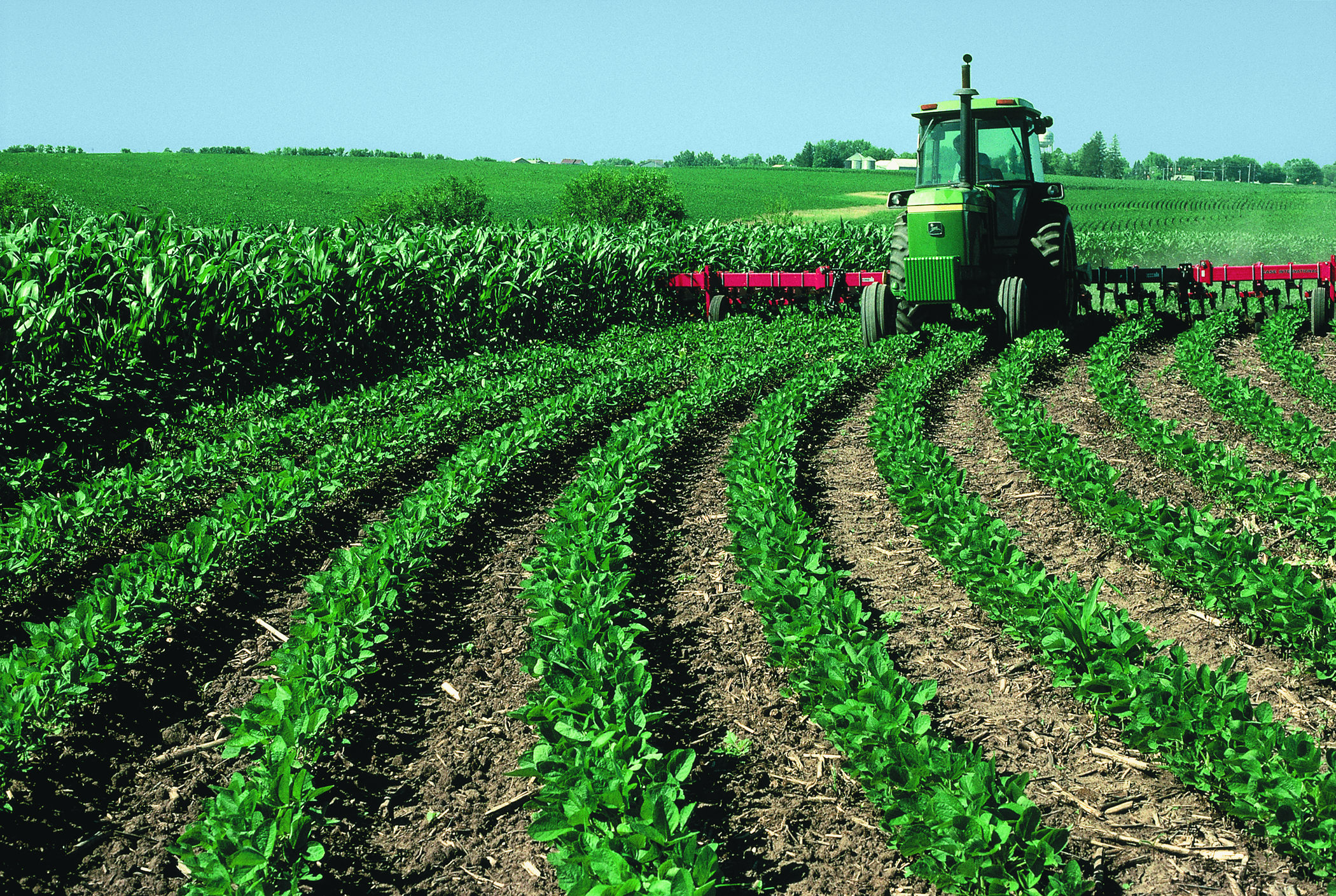 Agriculture Food And Natural Resources Education Msu Requ
