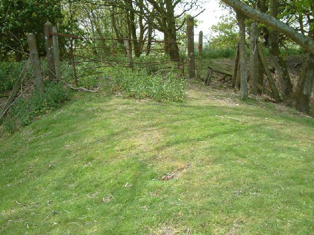 File:Old Railway Crossing - geograph.org.uk - 10064.jpg