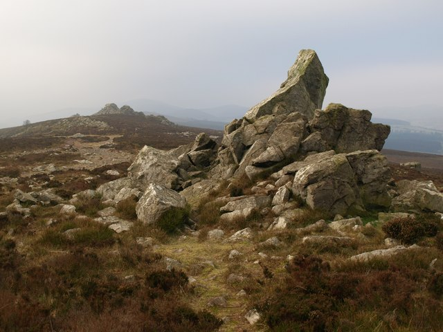 One of the Stiperstones - geograph.org.uk - 1108772