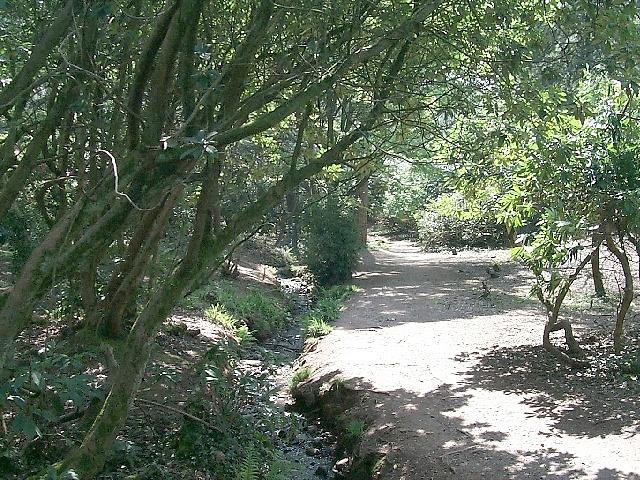 Parc Cefn Onn, Llysfaen - Thornhill - geograph.org.uk - 410320