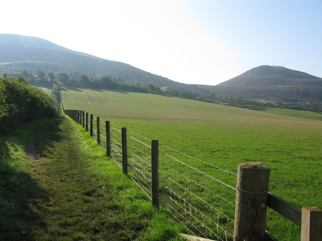 Path leading to the Eildon Hills - geograph.org.uk - 974922