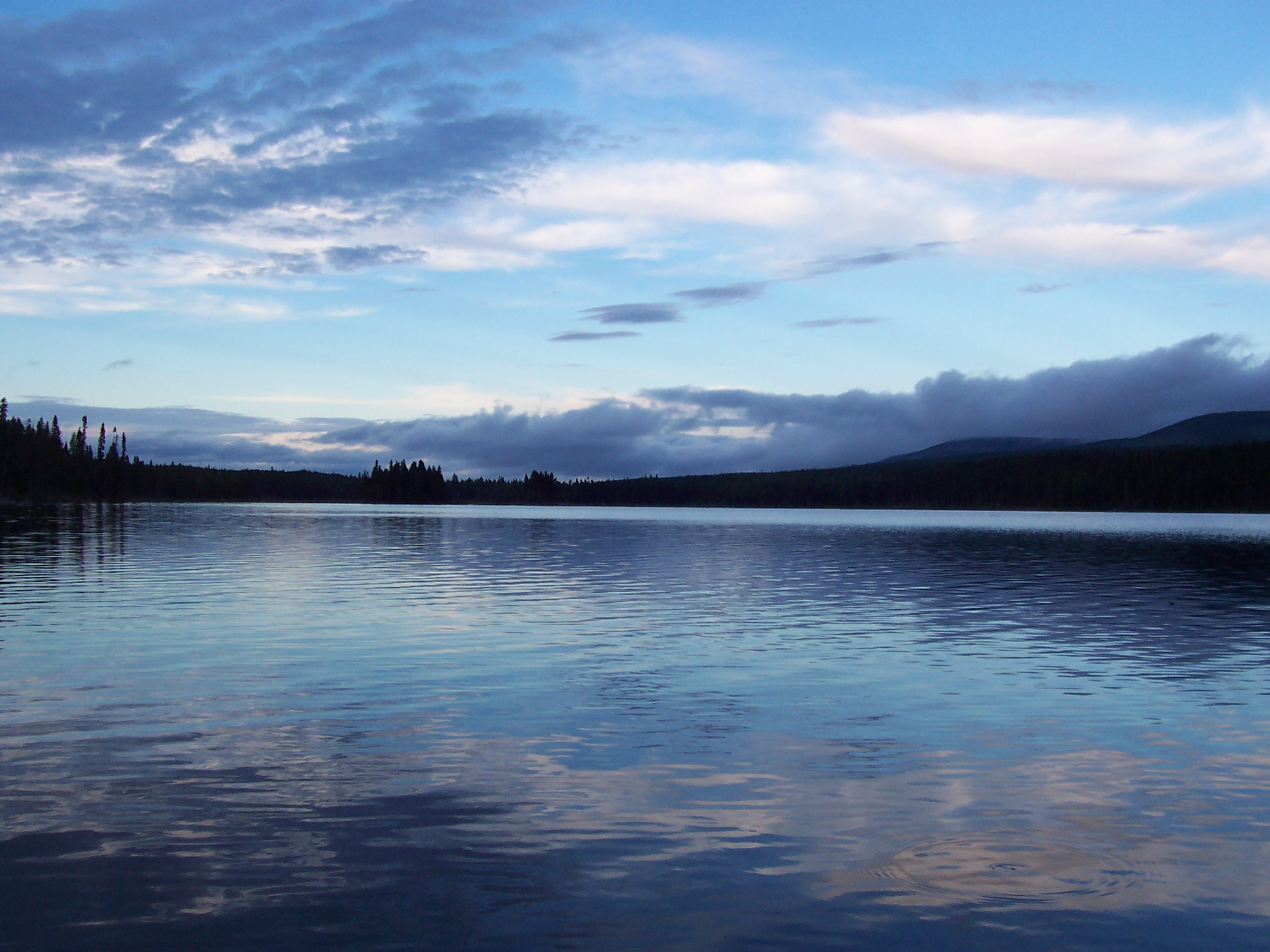 File:paysage 01 réserve de matane (2005-08)