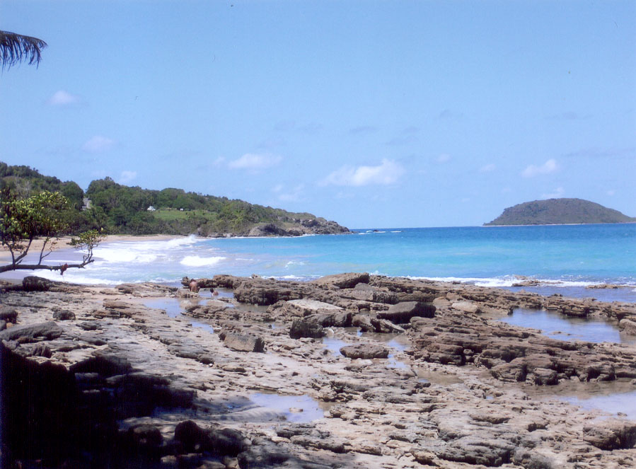 Sainte-Rose (Guadeloupe)
