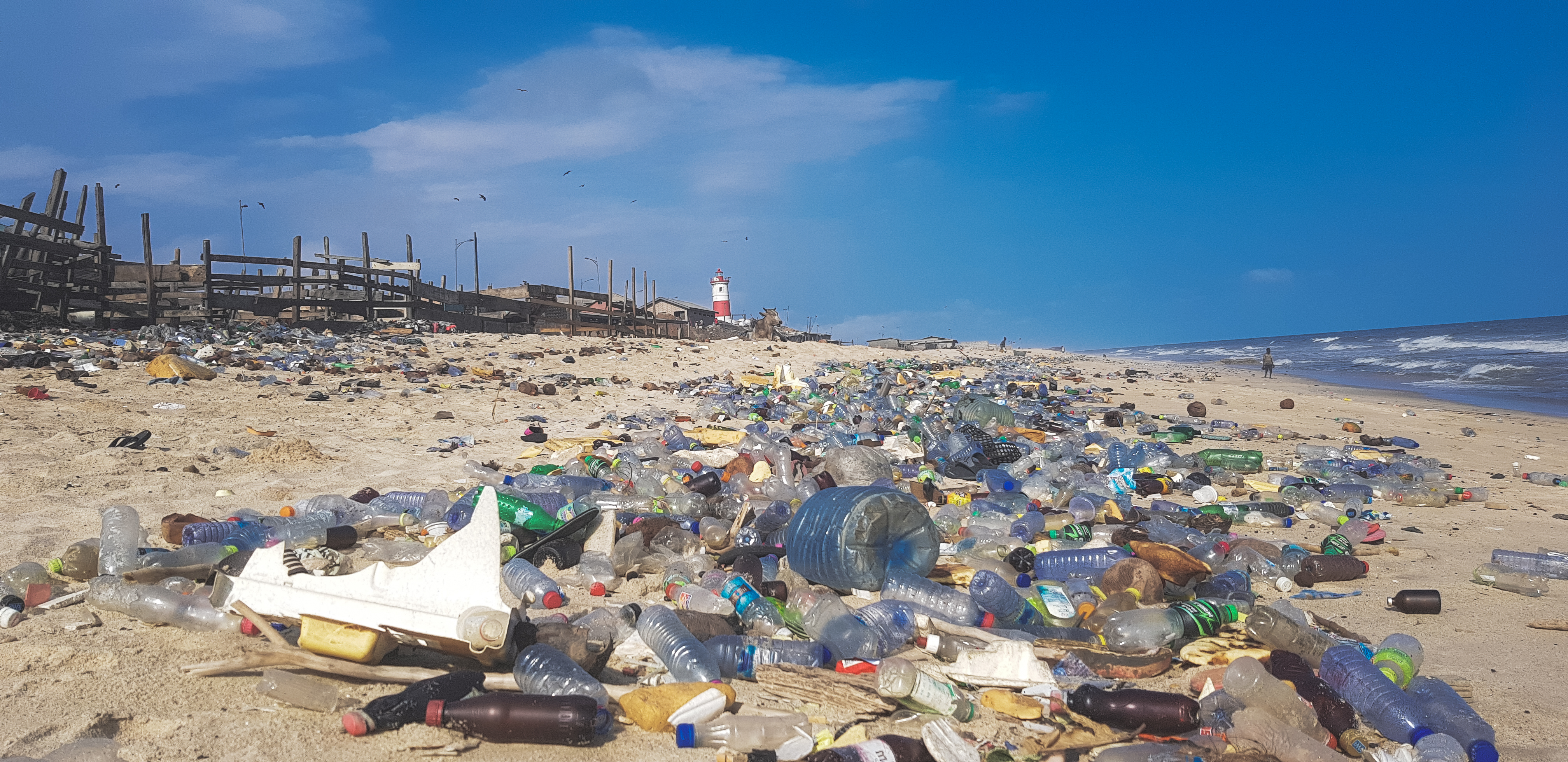 Plastic Pollution  Wikipedia Plastic Pollution
