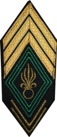 An insignia for a Sous-officier contains three components. In this case, three upward gold chevrons indicates a Sergent-chef. The diamond-shaped regimental patch (or Écusson) is created from three green borders indicating a Colonial unit; rather than one for &quotRegulars&quot or two for &quotReserves&quot. The grenade has seven flames rather than the usual five. Two downward chevrons of seniority attests to at least 10 years service. - French Foreign Legion