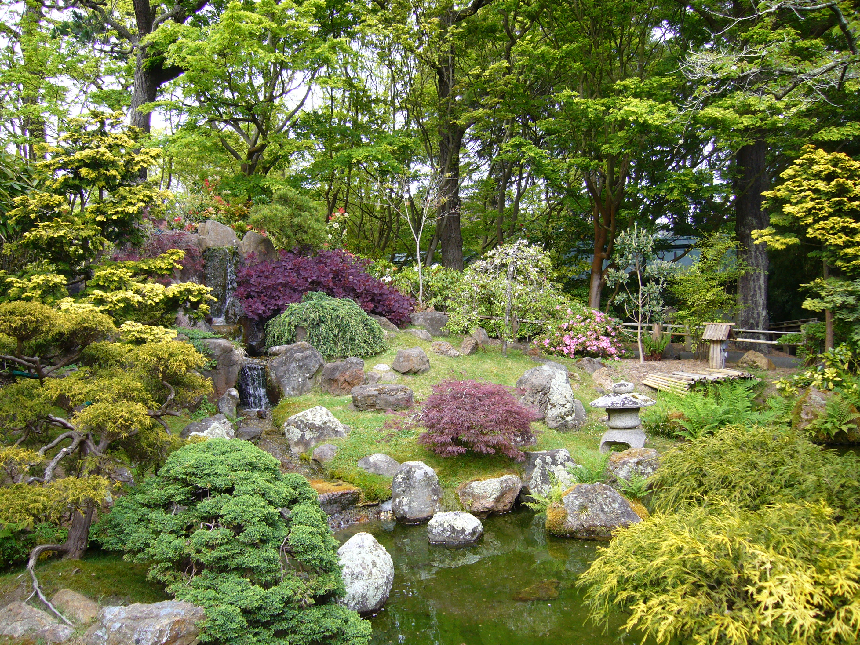 File sf japanese garden jpg wikipedia for Japanese garden backyard designs