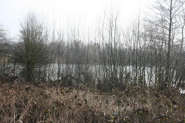 Sevenoaks Wildlife Reserve - geograph.org.uk - 1720459