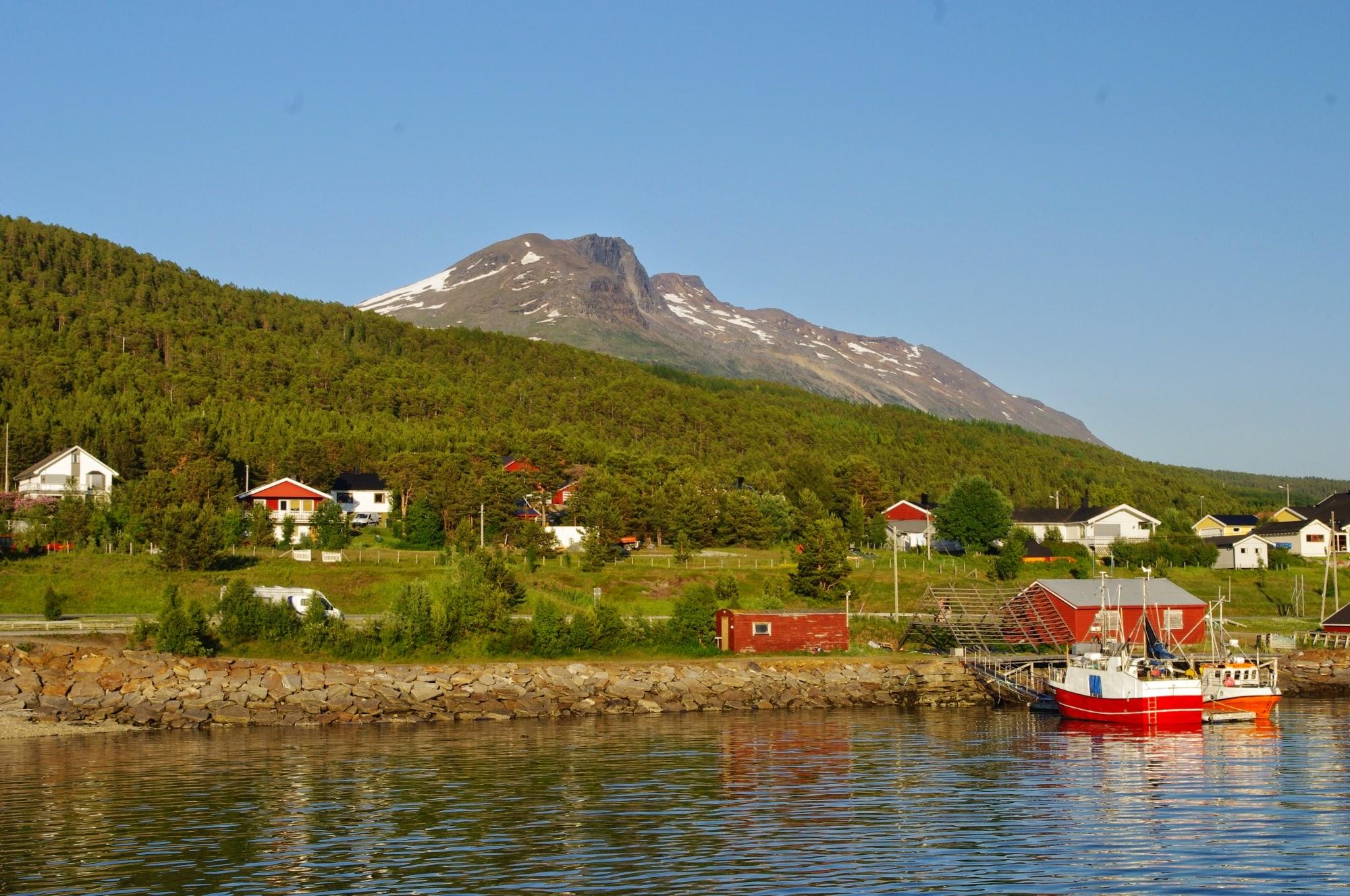 Polish Singles & Women in Norway | Polish Dating in Norway
