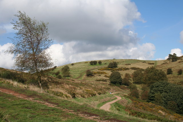 Table Hill - geograph.org.uk - 251728