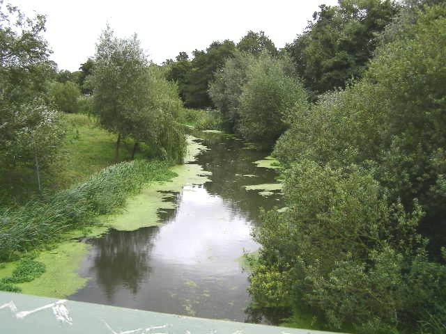 Tranquil River Roding - geograph.org.uk - 952743