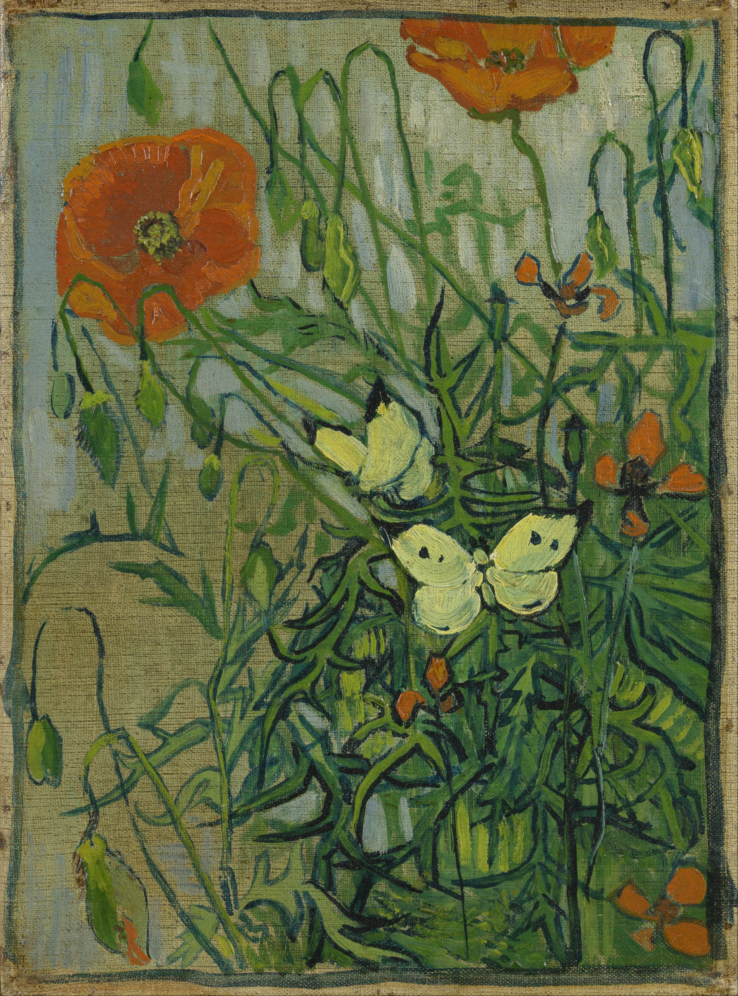 File vincent van gogh butterflies and poppies google for Van gogh paintings locations