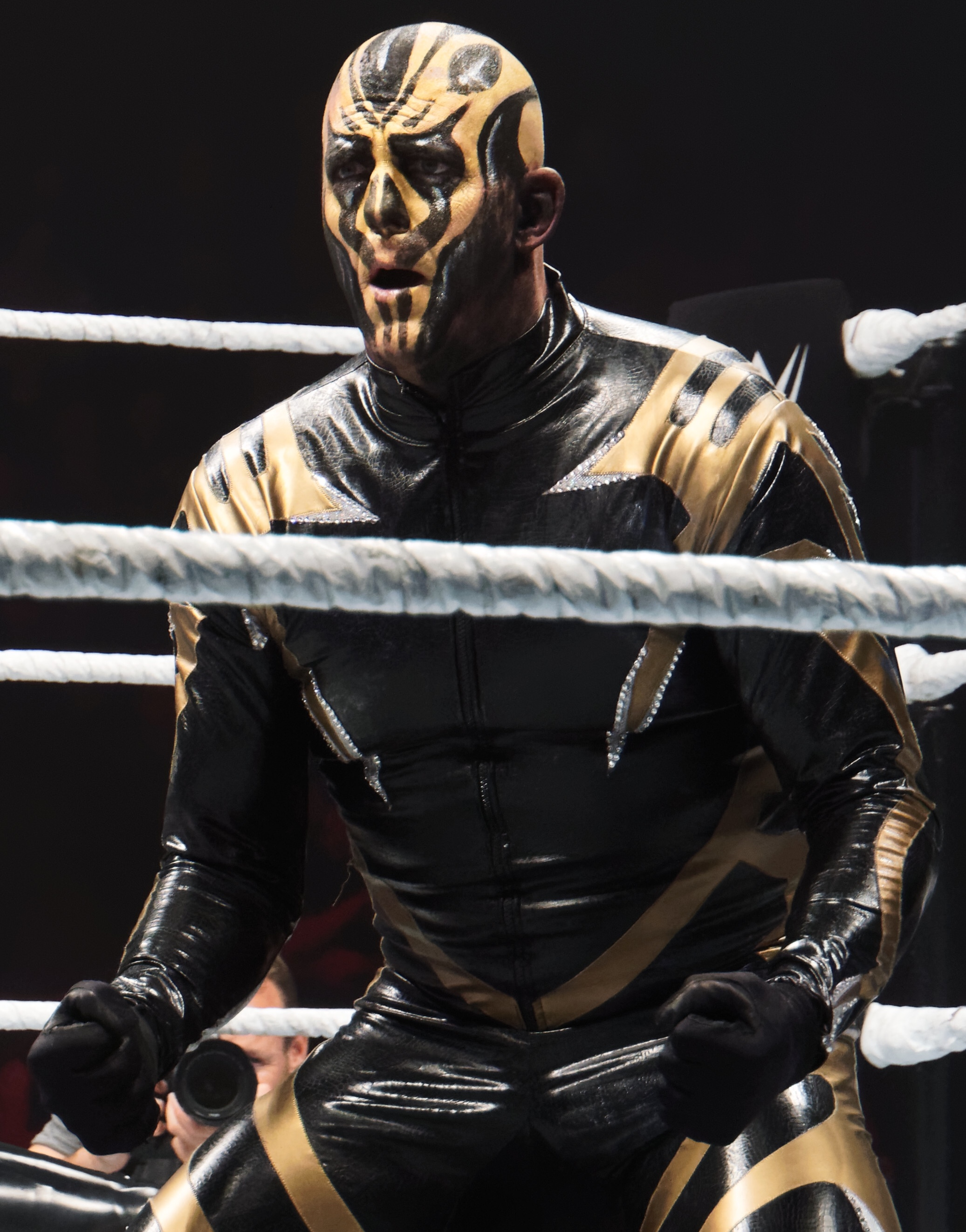 Goldust - Wikipedia
