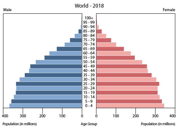 Ficheiro:World population pyramid (2018).jpg