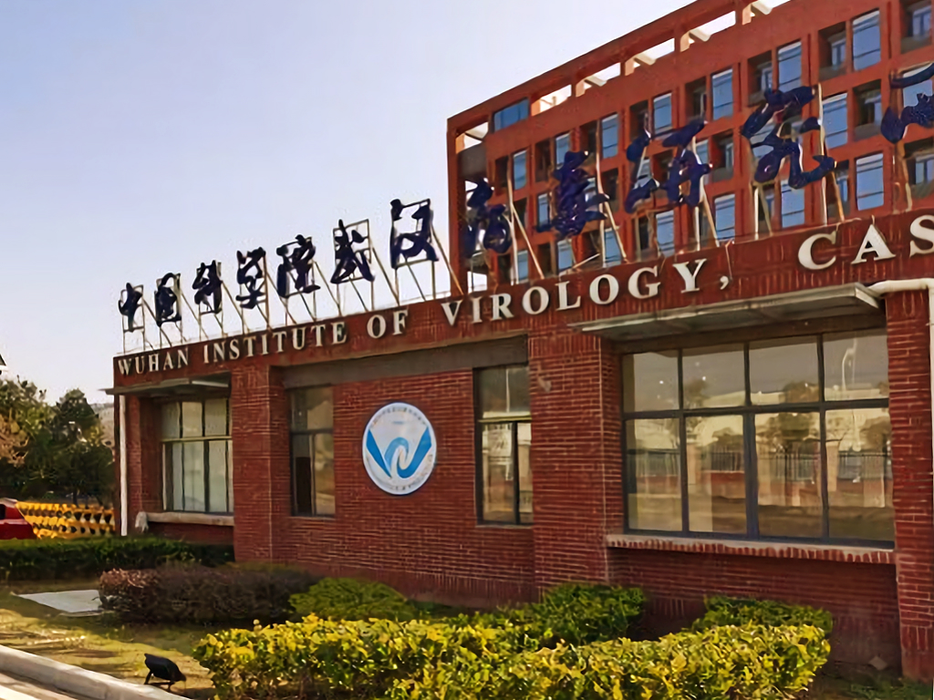 Wuhan Institute of Virology - Wikipedia