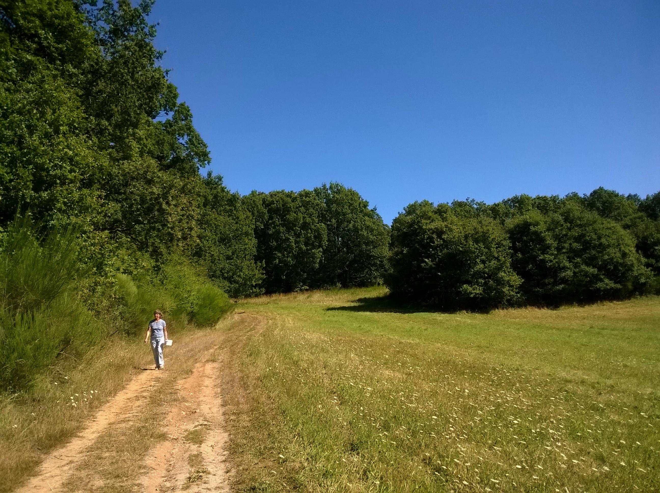 File Yvelines Hermeray Vers Le Refuge Spa 23082016 Panoramio