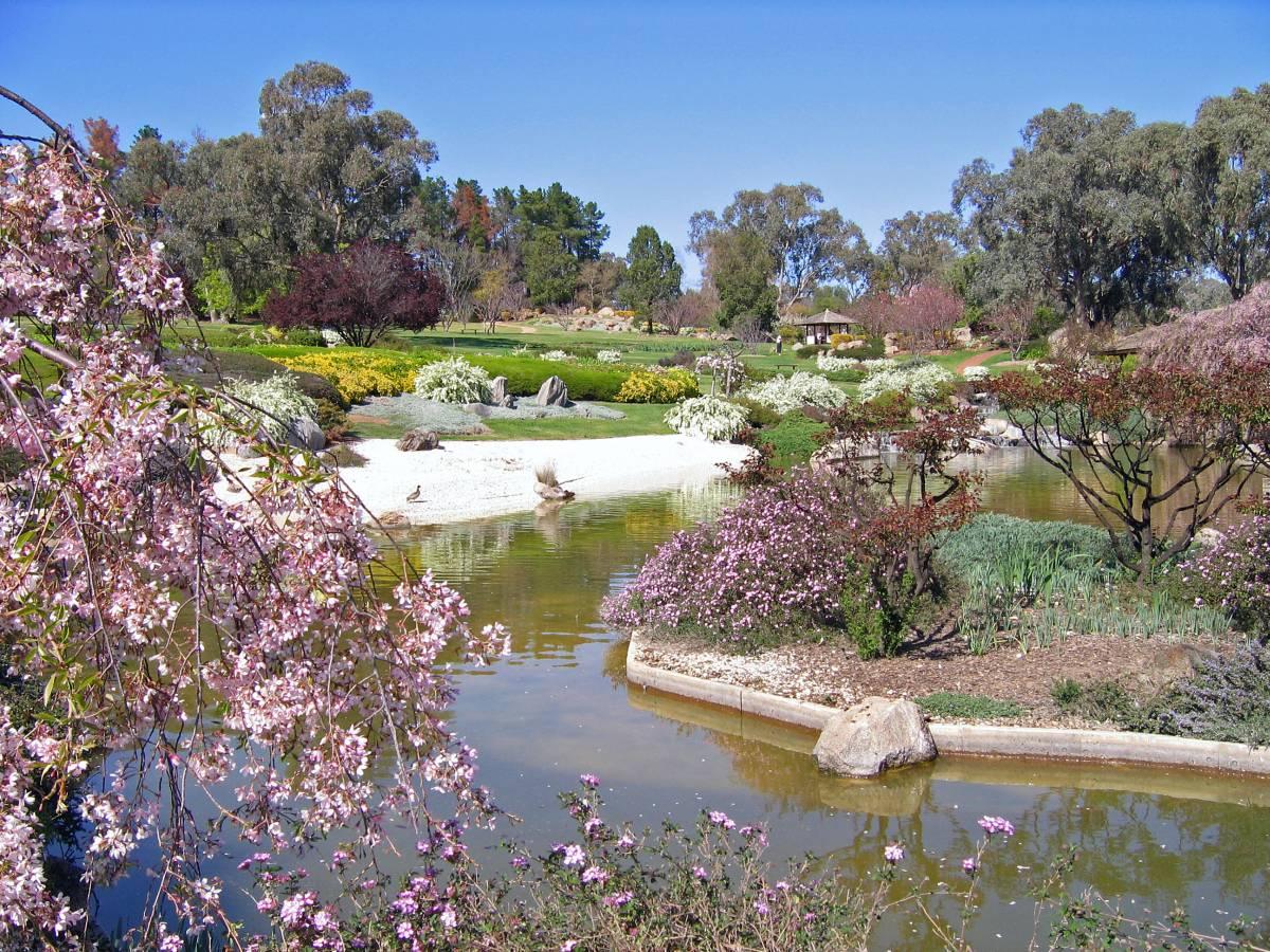 Cowra familypedia - Japanese garden ...
