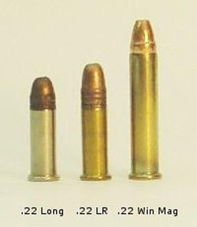 22_Long,_22_LR,_22_Winchester_Magnum.JPG