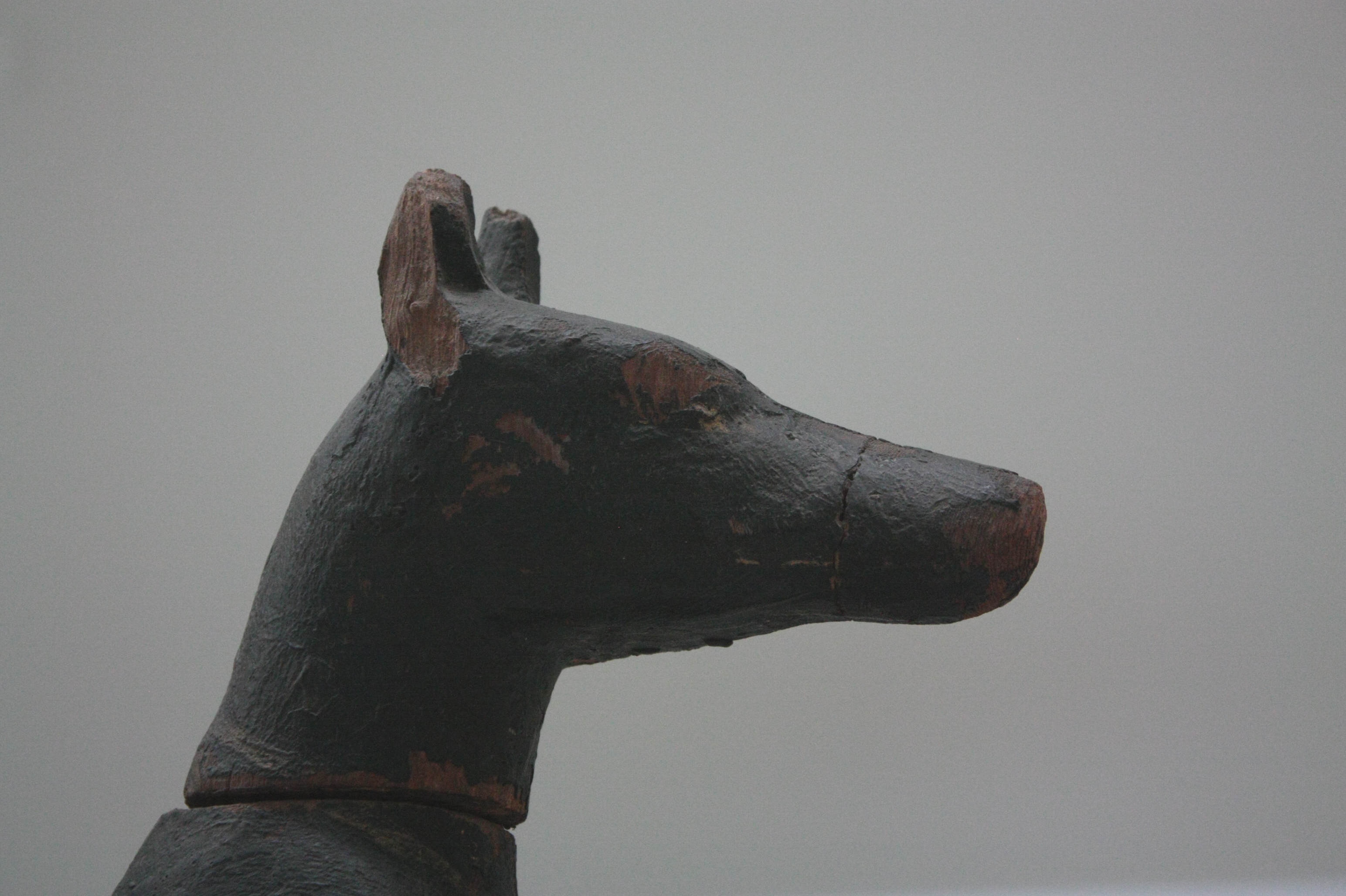 Fileanubis Tête De Chienjpg Wikimedia Commons