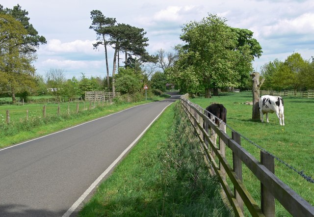 Cadeby Lane in the Market Bosworth Country Park - geograph.org.uk - 1319872