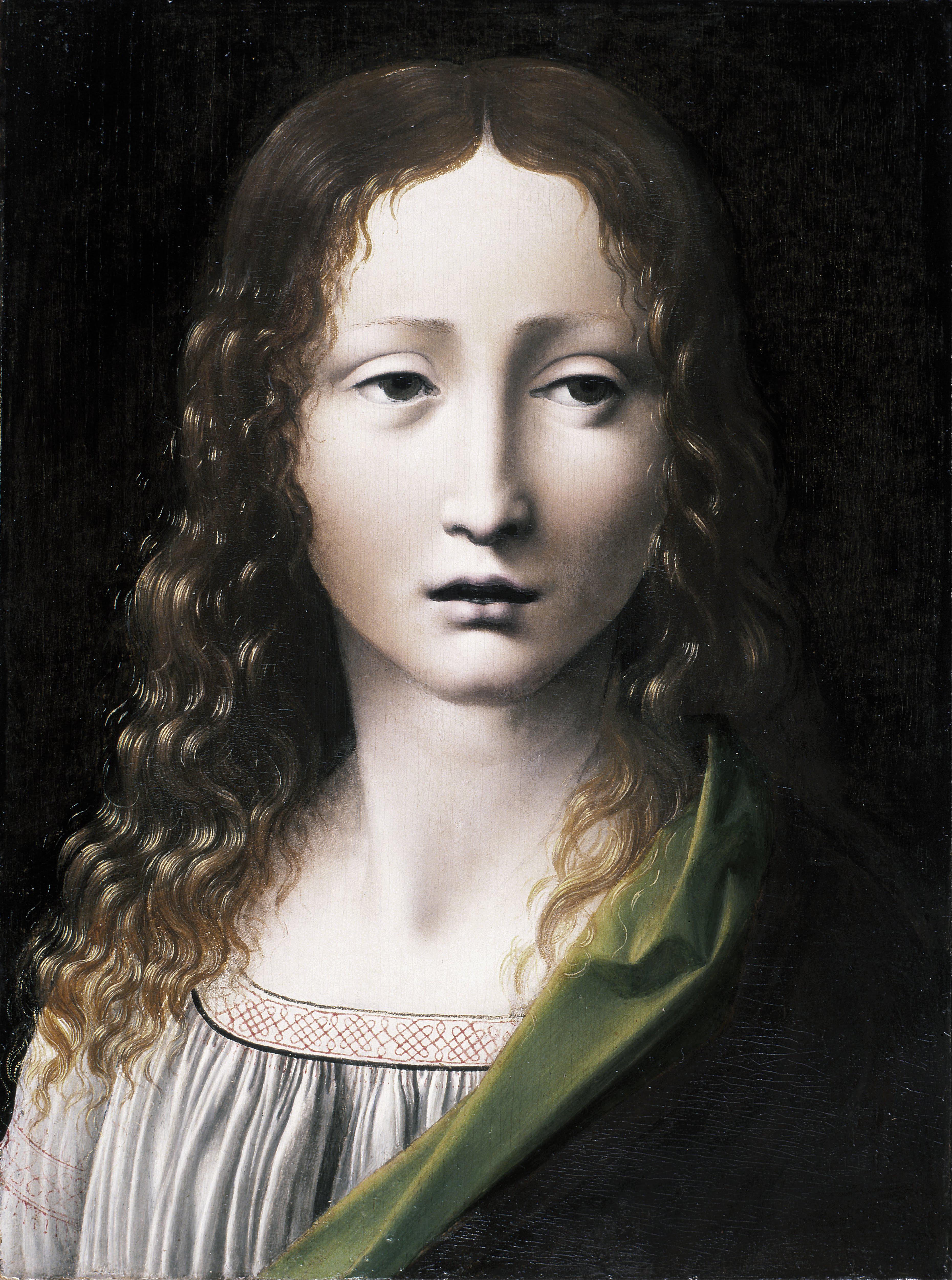 https://upload.wikimedia.org/wikipedia/commons/9/9b/Giovanni_Antonio_Boltraffio_-_The_Adolescent_Saviour_-_Google_Art_Project.jpg