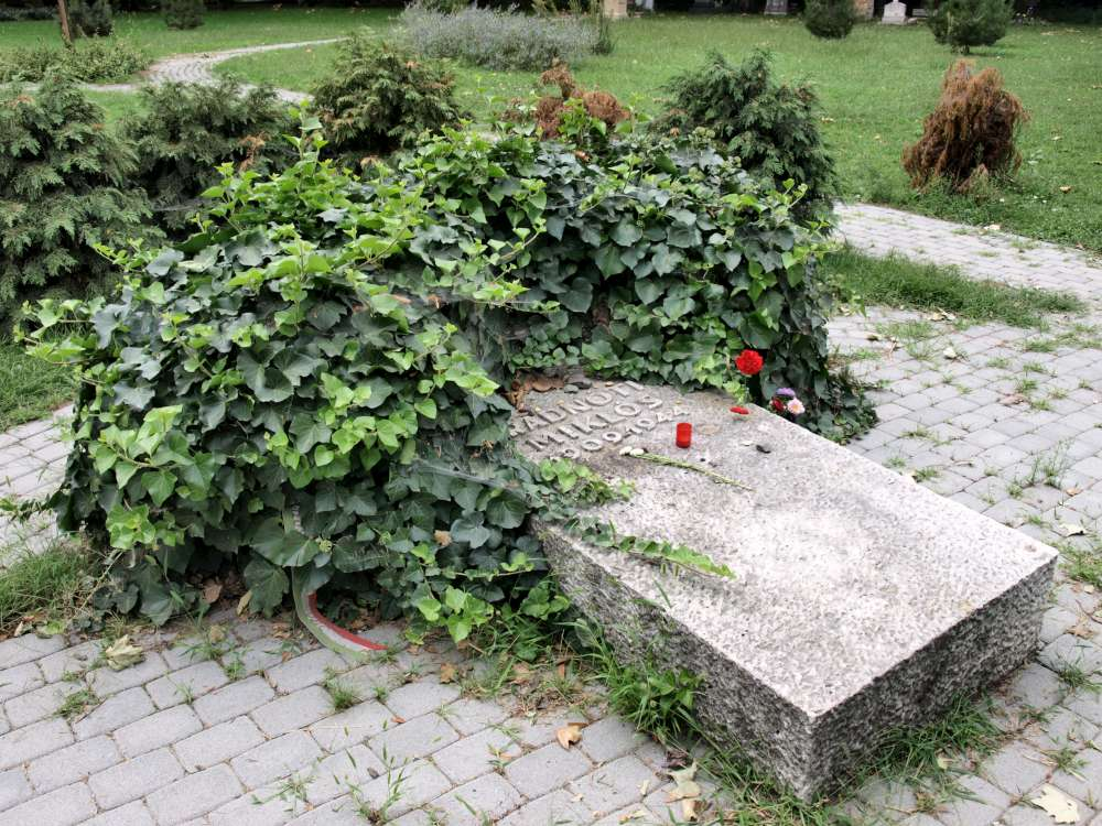 Miklos Radnoti Poems File Grave of Miklos Radnoti P8270237 Sza 1000 Jpg