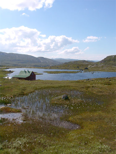 http://upload.wikimedia.org/wikipedia/commons/9/9b/Hardangervidda.jpg