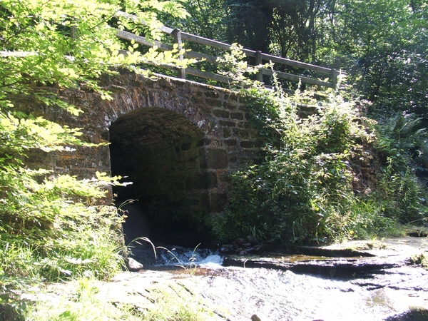 Hell Beck - geograph.org.uk - 216884