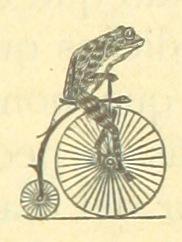 Image taken from page 185 of 'Historia de la Ciudad de Lorca, etc' (11115234236)