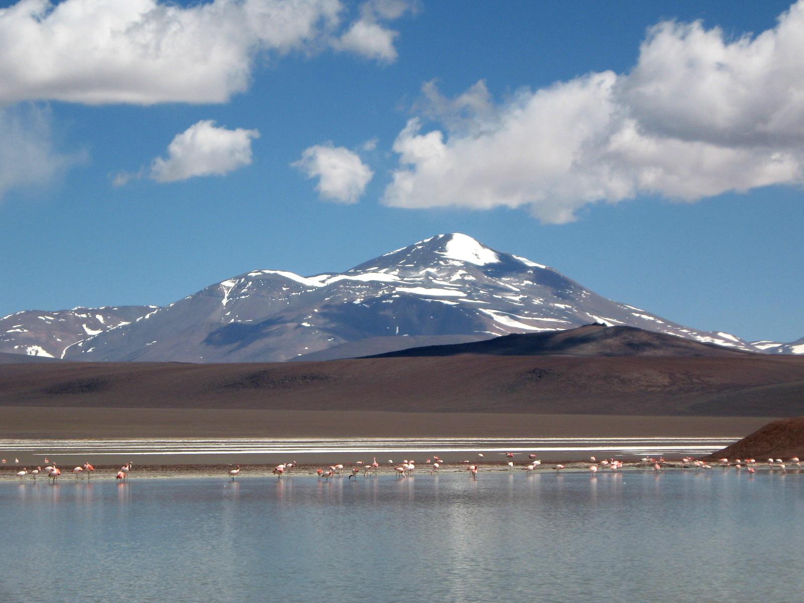 Laguna Brava - Ruta de Los Volcanes