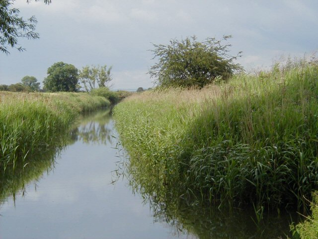 Market Weighton Canal - geograph.org.uk - 138907