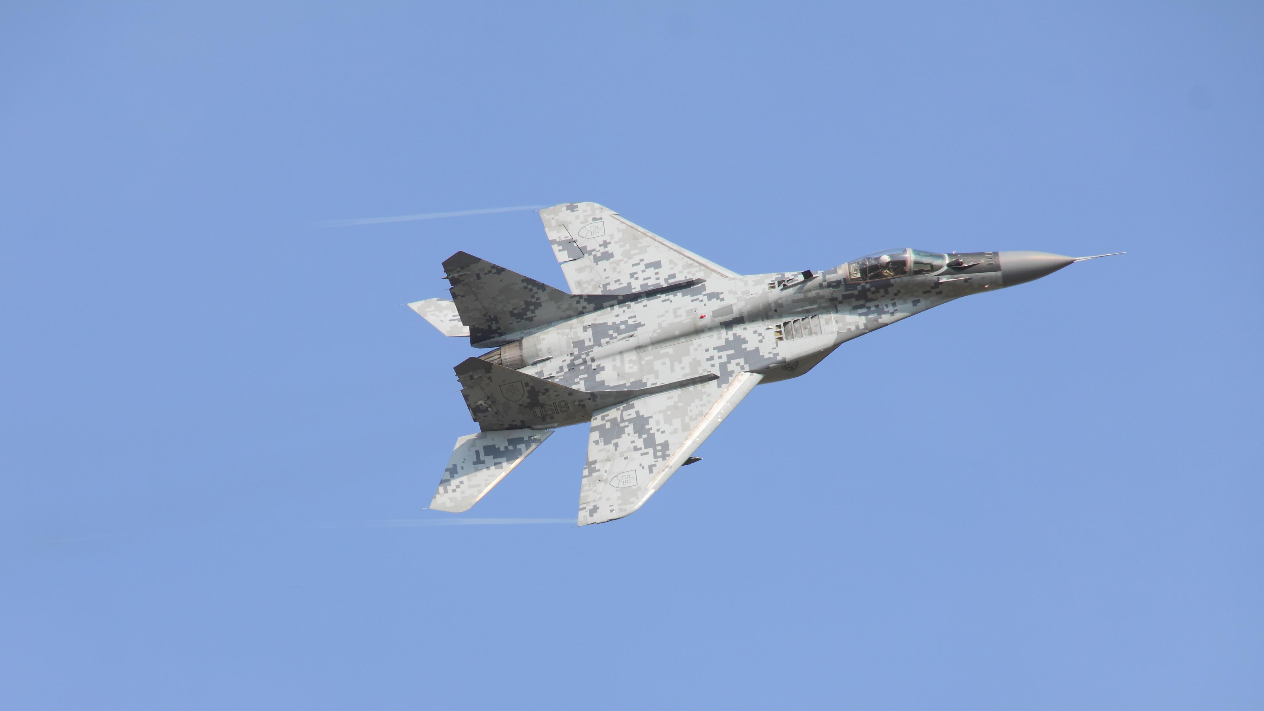 File:MiG-29 2598.JPG
