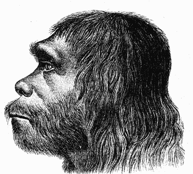 Neandertálec