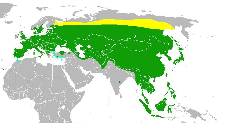 https://upload.wikimedia.org/wikipedia/commons/9/9b/Passermontanusmap.png