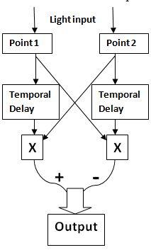 Motion perception - Wikipedia
