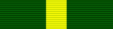 File:Ribbon - Efficiency Decoration (South Africa).png