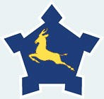 SAAF roundel 1970-1981
