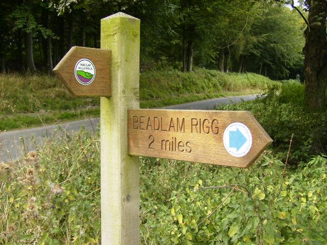 Tabular Hills Walk Fingerpost near Carlton - geograph.org.uk - 550034
