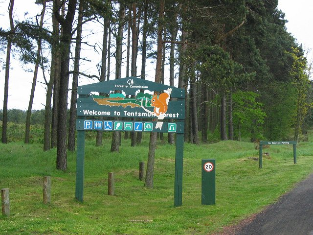 Tentsmuir Forest. - geograph.org.uk - 13503