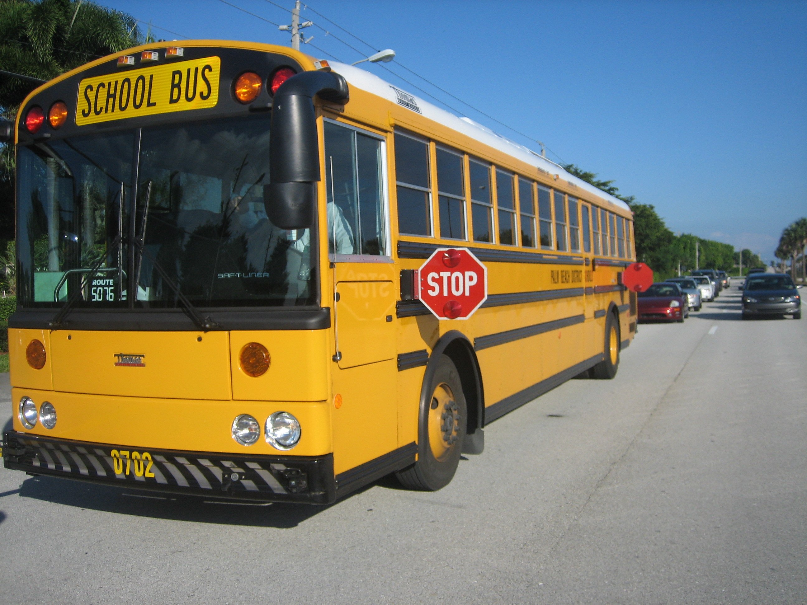 file thomas school bus bus jpg