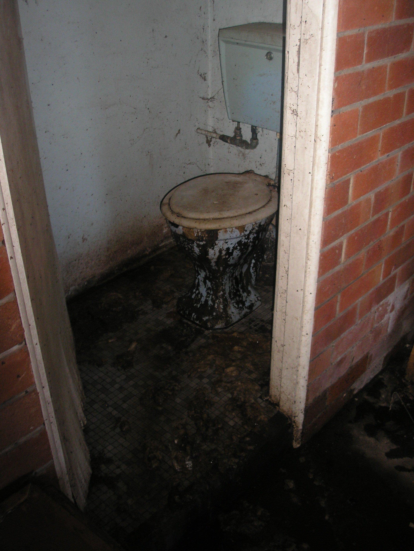 Toilet_Overflow.jpg
