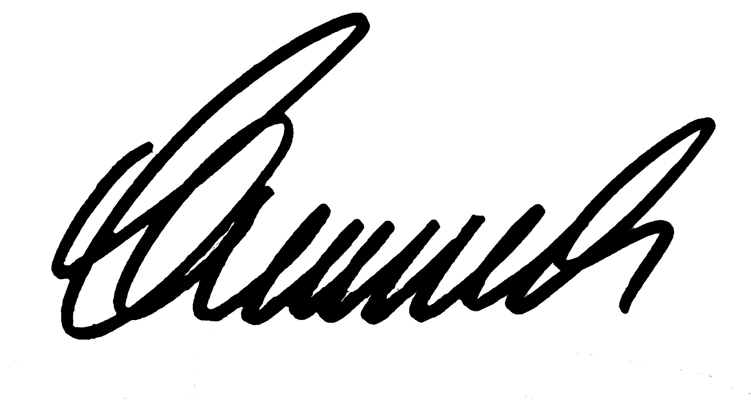 Thomas Schumacher - Bassliner