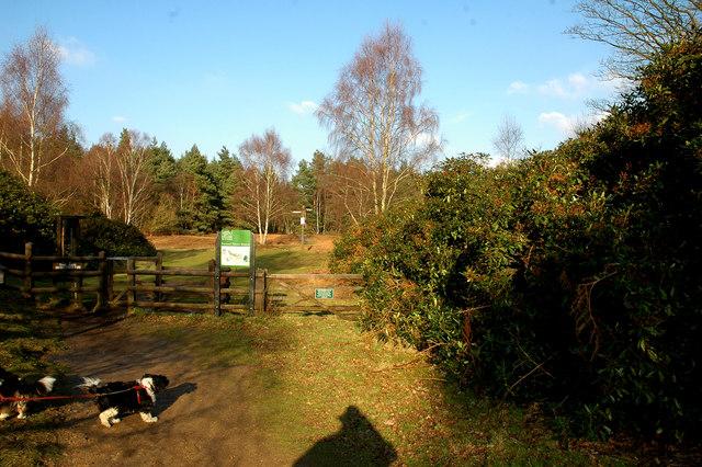 Track and Gateway, English Nature Reserve, Wolferton - geograph.org.uk - 138173