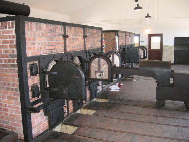 Buchenwaldcrem