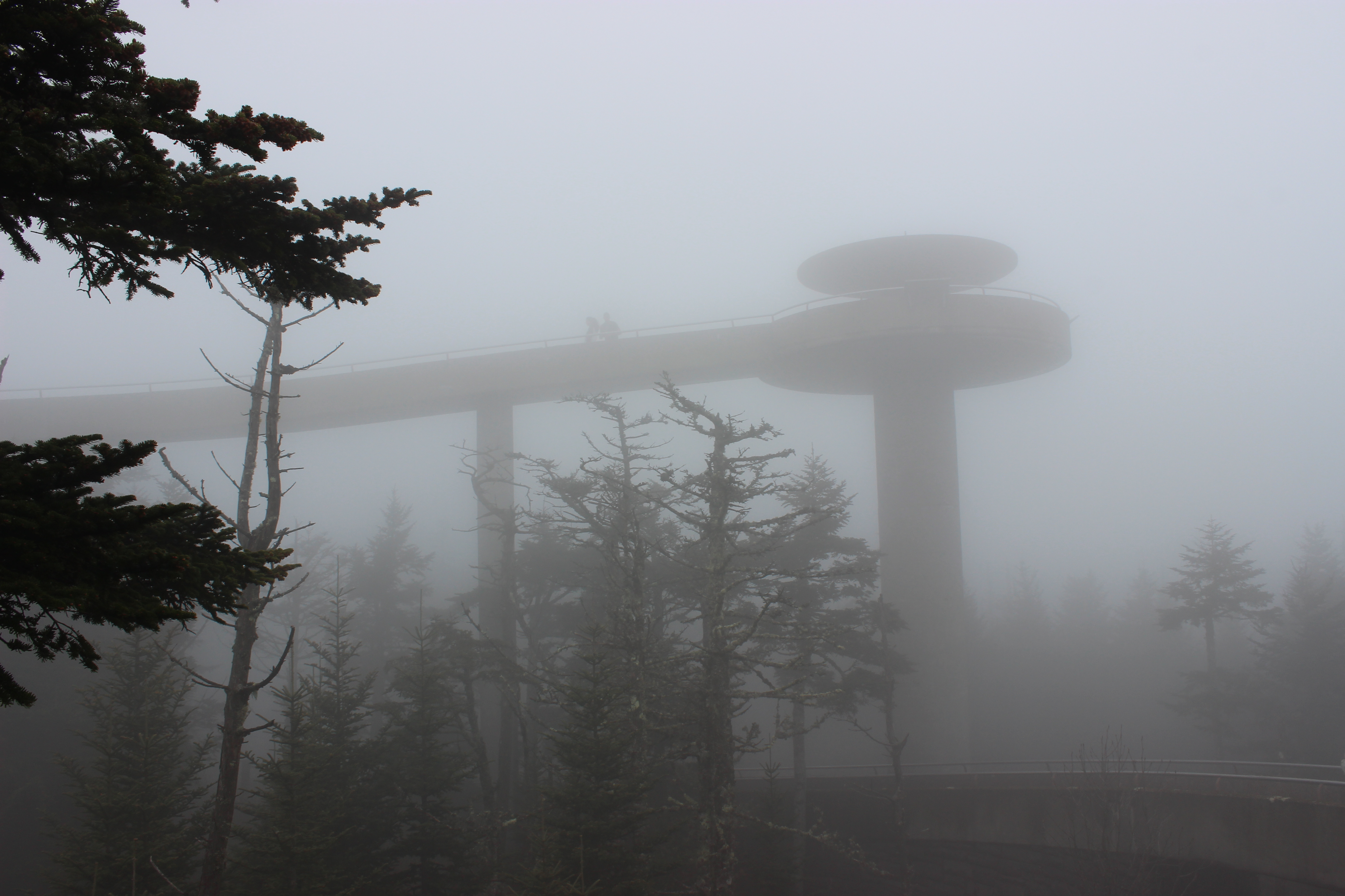 clingmans dome weather - HD5184×3456